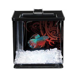 MA 2.5L EZ Care Betta Kit - Black w/ LED