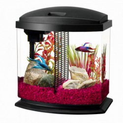 AQ LED BettaBow Desktop Kit - Black - 2.5 gal