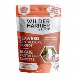WILDER HARRIER CHIEN VEGANE WAKAME CANTALOUP CAROTTE 120G (C