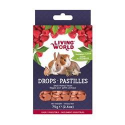Régals LW pour petits animaux, pastilles, arôme de frambois