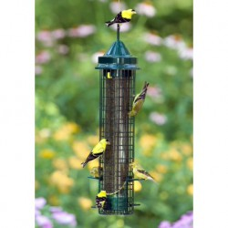 SQUIRREL BUSTER® FINCH 1.5L