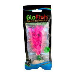 Glofish Plant Pink Medium