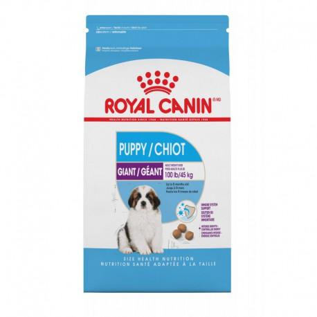 GIANT Puppy / Chiot 30 lb 13 6 kg