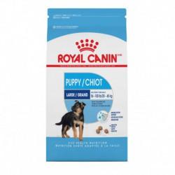 LARGE Puppy / GRAND Chiot 35 lb 15.9 kg