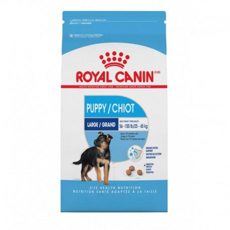 LARGE Puppy / GRAND Chiot 35 lb 15   9 kg