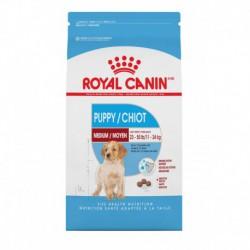 MEDIUM Puppy / MOYEN Chiot 6 lbs 2.72 kg