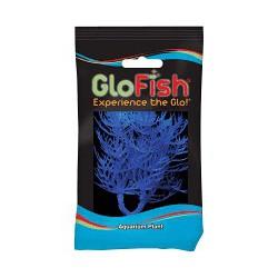 Glofish Plant Blue Small