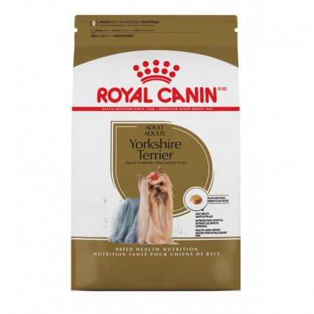 Yorkshire Terrier Adult / Yorkshire Terrier Adulte 10 lb 4