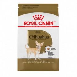 Promo-CLAIMRC -  juin - Chihuahua Adult / Chihuahua Adulte 2