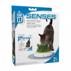 CA Des. Senses Grass Garden Refill,2pk