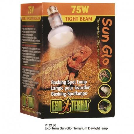 75W Day-Glo Lampe D/Chauf.63Mm-V