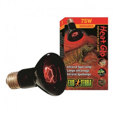 75W Heat-Glo Lamp.Infrar.Noct.-V