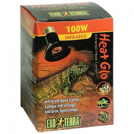 100W Heat-Glo Lamp.Infrar.Noct.-V