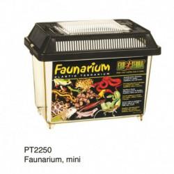 Exo Terra Faunarium, mini-V