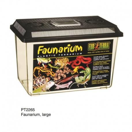 Exo Terra Faunarium, grand-V