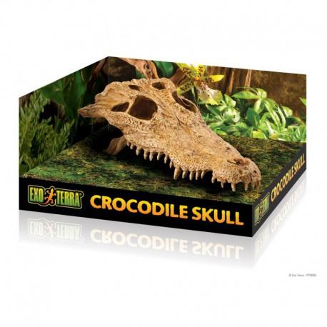 Crâne de crocodile ExoTerra p. terrarium