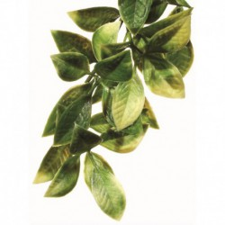 Exo Terra Shrub Plant Small Mandarin-V