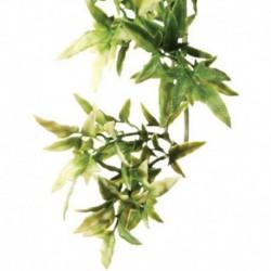 Exo Terra Shrub Plant Large Croton-V