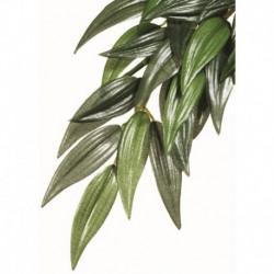 Exo Terra Silk Plant Small Ruscus-V