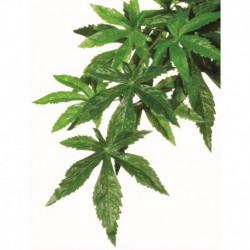 Exo Terra Silk Plant Small Abutilon-V