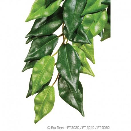 Exo Terra Plante En Soie Ficus Moy.-V