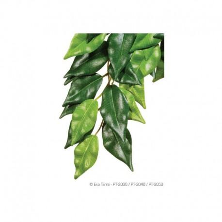 Exo Terra Plante En Soie Ficus Gr.-V