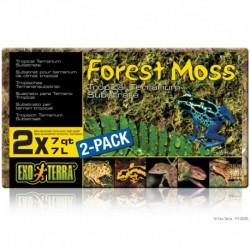 Mousse de forêt Forest Moss EX, 500 g-V