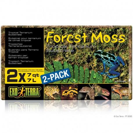 Mousse de forêt Forest Moss EX, 500 g-V EXO TERRA Sables,Substrats,Litières