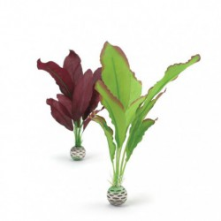 Small Red / Green Silk Plant Pack