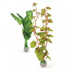 Medium Green / Green Silk Plant Pack