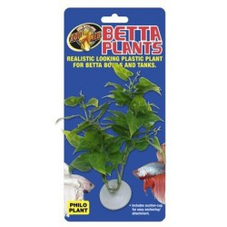 Betta Plant - Philo