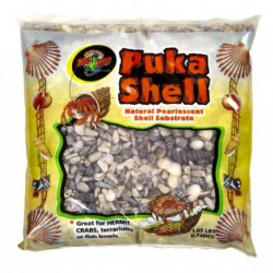 Puka Shell (Natural Shell Substrate)
