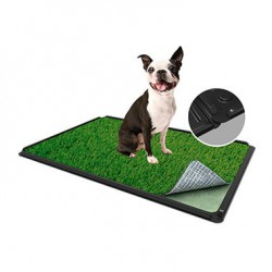 """TURF DOG SUPPORT+PAD+GAZON 16"""" x 24"""""""