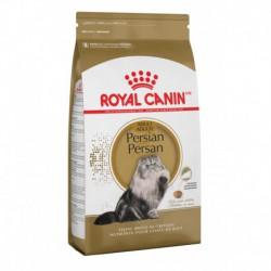 Persian / Persan 3 lbs 1 4 kg