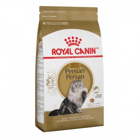 Persian / Persan 15 lb 6 8 kg