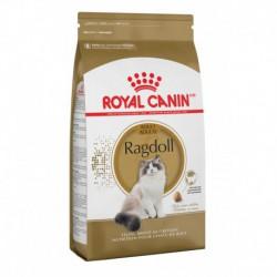 Ragdoll 7 lbs 3 2 kg