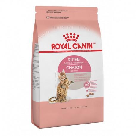 Kitten Spayed Neutered / Chaton Stérilisé 2 5 lbs 1 1 kg