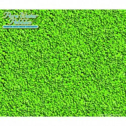 WWI 70265 Neon Green 5lb