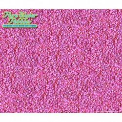 WWI 70285 Neon Pink 5lb x 6pc