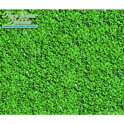 WWI 70151 Emerald Green 25lb