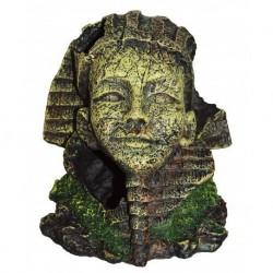 AF Egyptian Face