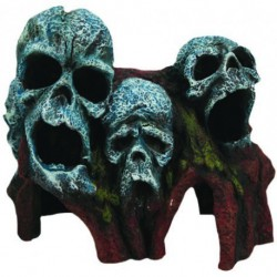 Aqua-Fit Tree Root Skulls 7x4x6 in