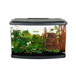 Aquarium équipé Vista Fluval, 60 L FLUVAL Aquariums Kit