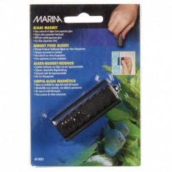 Marina Algae Magnet, Small-V
