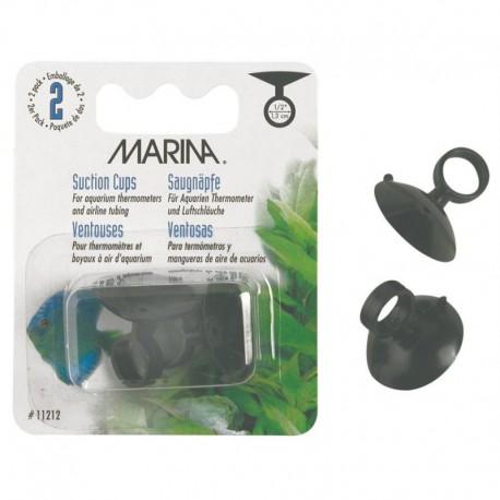 Ventouses Marina p. Thermomètres D Aq, G