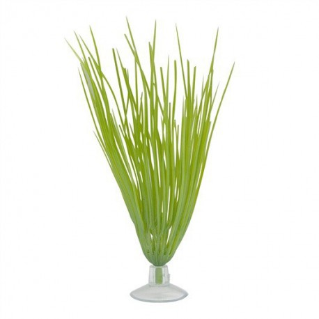 MA Hairgrass 5in W/Suction Cup-V