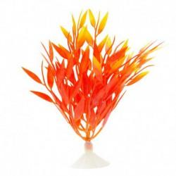 MA Betta Fire Grass,12.7cm (5in)