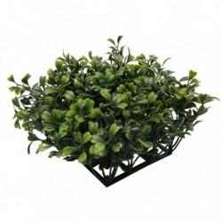 Fluval Chi Boxwood Ornament-V