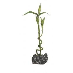 Marina Betta Kit Bamboo Ornament-V