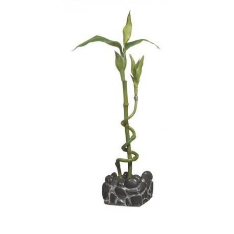 Ornement Bambou pour aq. MA pour betta-V